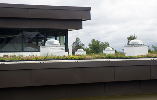 Hannaford-solatubes-green-roof