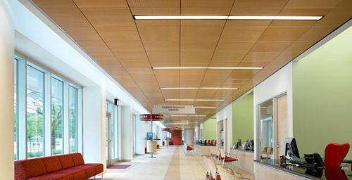 Wood-works-fsc-ceiling-panels