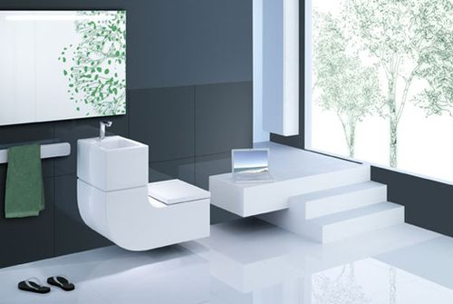 Jetson Green Waste Not With A Combo Sink Toilet