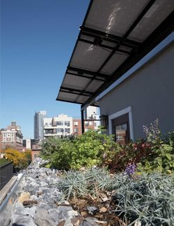Natural-home-showhouse-nevins-rooftop