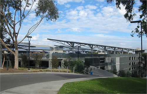 UCSD-hopkins-solar-tree-side