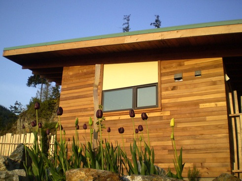 Eco-shed-james-glave-side