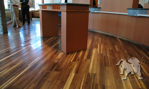 Staybull-flooring-black-walnut