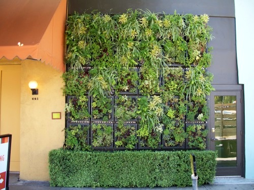 Jetson Green Lush Edible Living Wall In Los Angeles