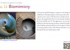 Trendwatch 11 Biomimicry