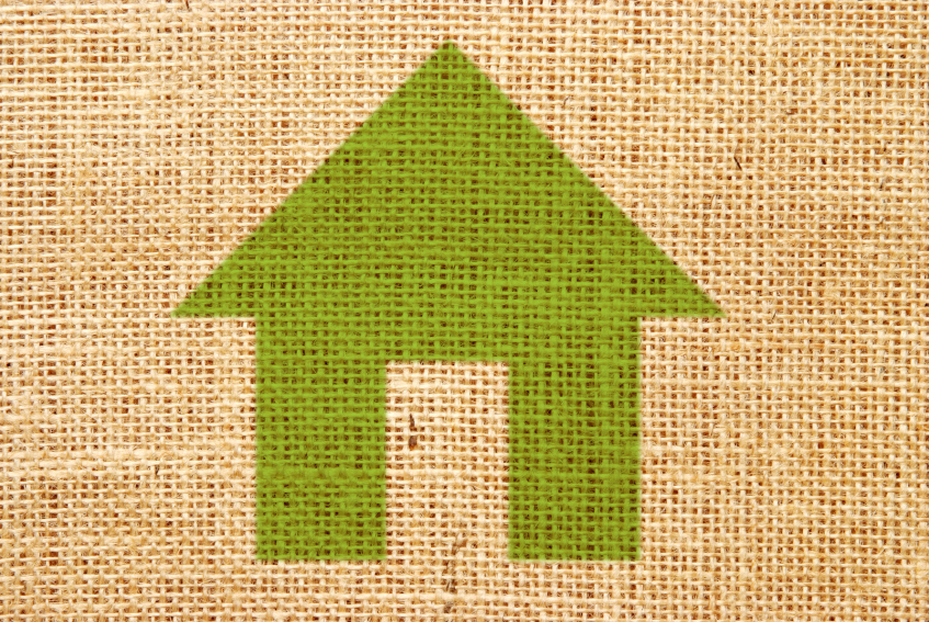 Sustainable Green Homes