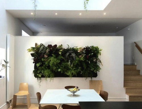 On Watering Living Walls in the Home