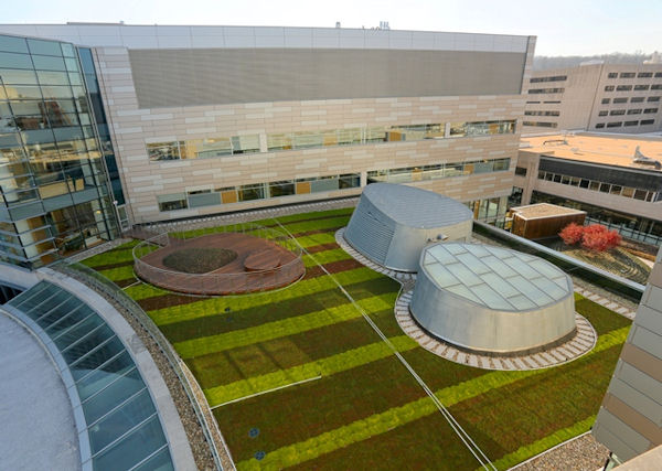 Green-Roof-Childrens-Hospital-1