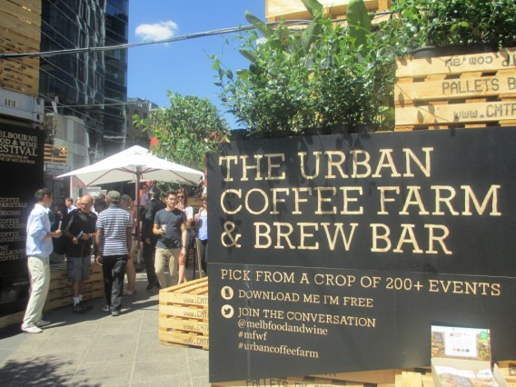 Urban-Coffee-Farm-3