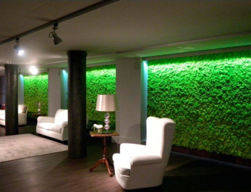Create a Green Wall with MossFrame from Benetti Stone