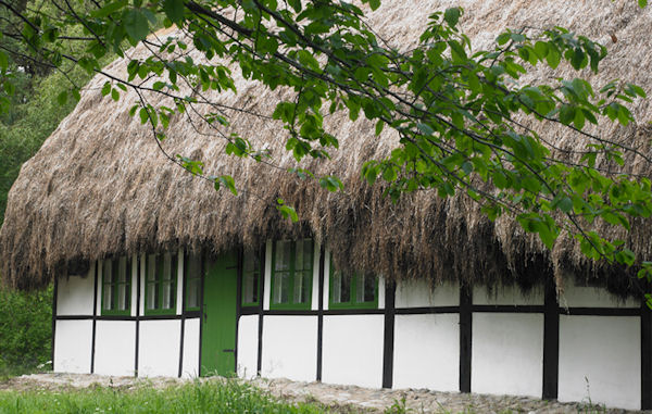 seawed-thatched-roof