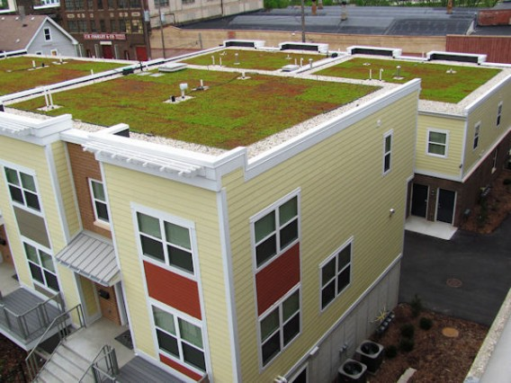 Green-Roof-System-Xero-