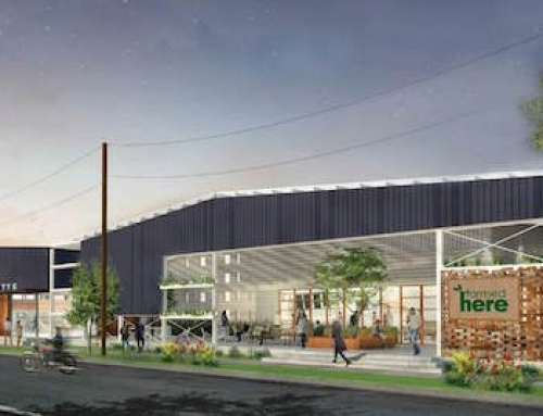 Large Vertical Farm to Open in Kentucky