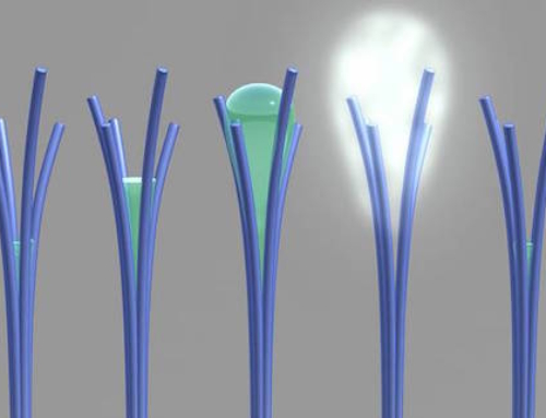 Accidental Creation of a New Material That can Capture Water from Air