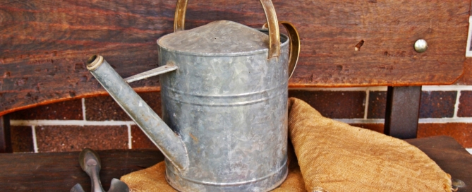 watering-can-1466491_1920