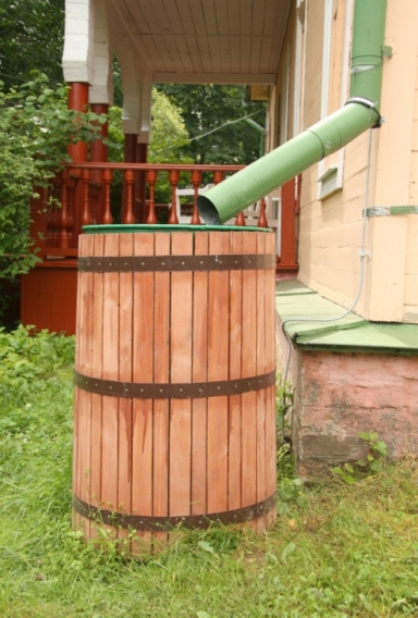 creating-a-green-yard-the-sustainable-way-image-1