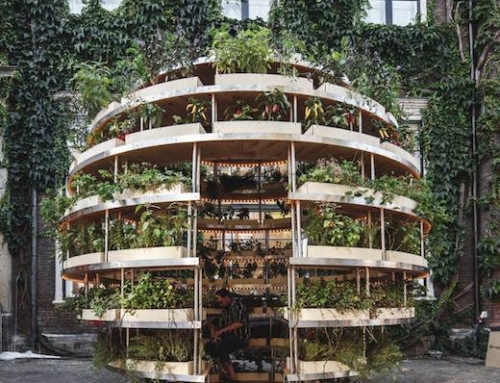 Sustainable Urban Farm