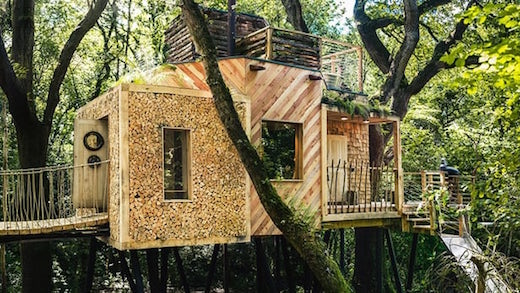Jetson Green Glamping In A Treehouse