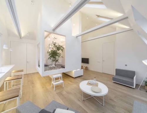 Tiny Attic Apartment with its Own Indoor Atrium