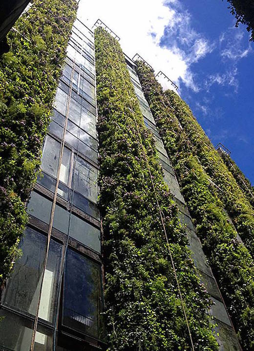 Jetson green the world s largest vertical garden rises for Paisajismo vertical