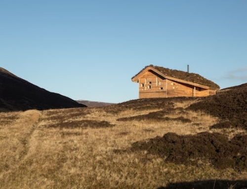 Modern Off-The-Grid Cabin Borrows From Traditional Wisdom