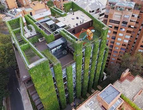 The World's Largest Vertical Garden Rises in Colombia