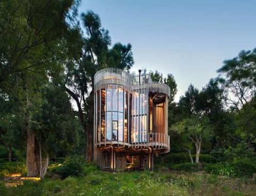 Treehouse Made to Co-exist in With the Trees That Surround it