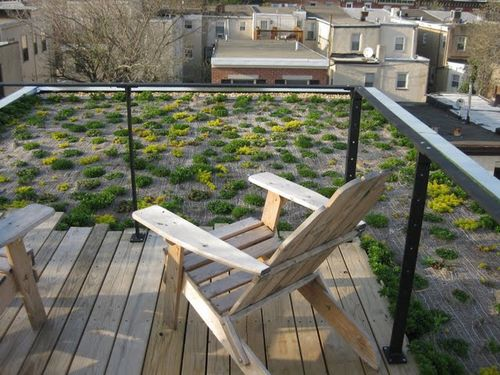 Montrose-green-roof