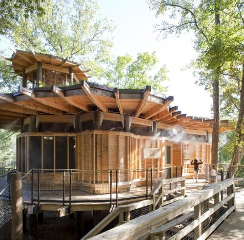 Camp-twin-lakes-treehouse-2