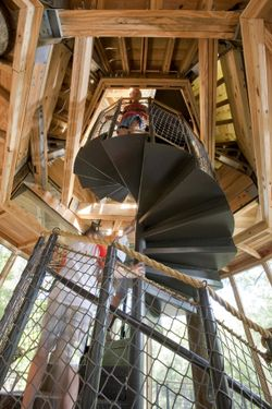 Camp-twin-lakes-treehouse-7