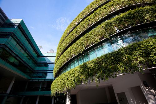 Green-building-living-wall