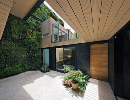 Vertical Garden Keeps Casa CorManca Cool and Comfortable