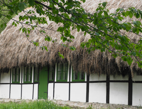 Modern Seaweed House Revives Tradition of Seaweed-Thatched Roofs