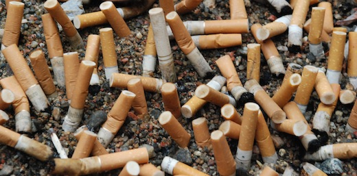 cigarettebutts