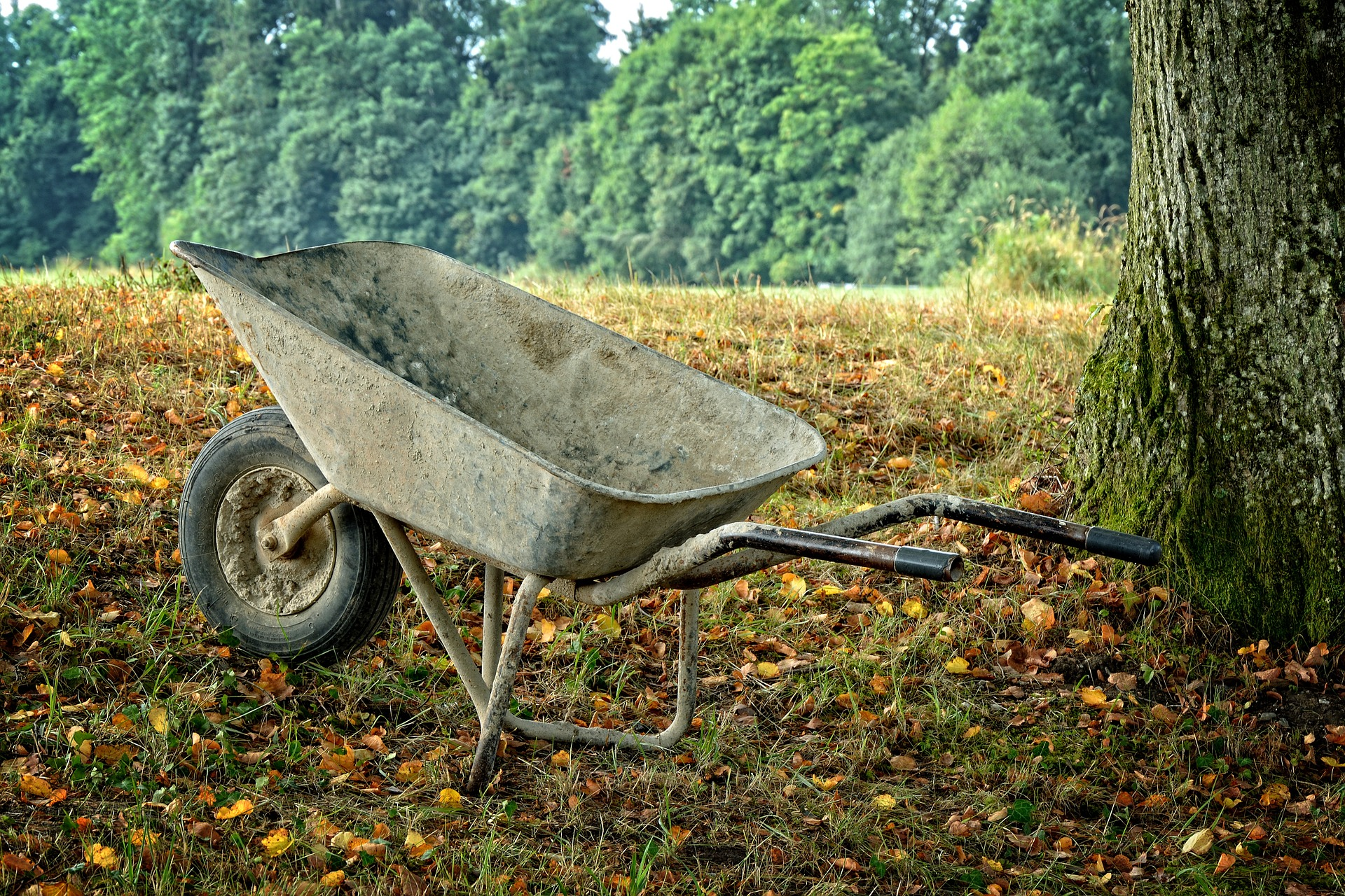 wheelbarrow-896369_1920