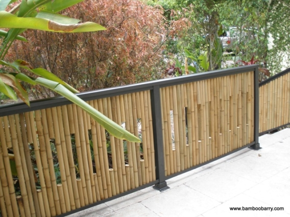 bamboo_fence